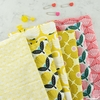 Loes Van Oosten for Cotton + Steel, On A Spring Day Bundle 13 Total (PRECUT)