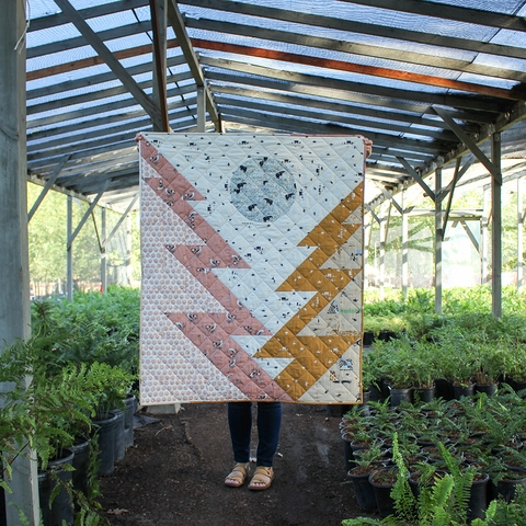 Mammoth Lakes Quilt Kit Featuring Charley Harper New Frontier