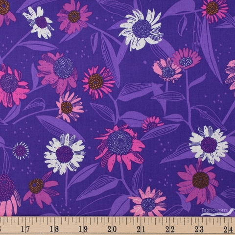 Marisol Ortega for FIGO, Flora, Echinacea Purple