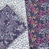 Rae Ritchie for Dear Stella, Botany, Cone Flowers White