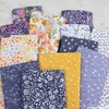 Rae Ritchie for Dear Stella, Botany in FAT QUARTERS 12 Total