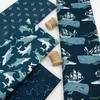 Rae Ritchie for Dear Stella, Sink or Swim, Whale Ships Navy