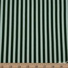 Rifle Paper Co. for Cotton and Steel, Primavera, Cabana Stripe Mint