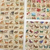 Robert Kaufman, Library of Rarities, Butterfly Stamps Vintage