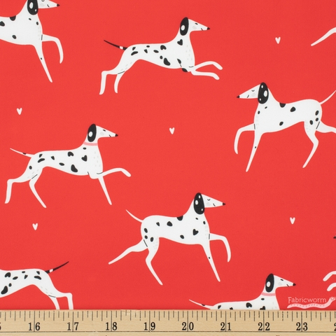 Robert Kaufman, Whiskers and Tails, Dalmatian Red