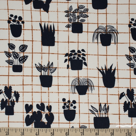Sarah Golden for Andover, Home, House Plants Shale