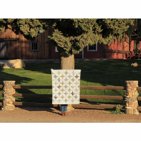 Star Gazer Quilt Kit Featuring Best of Teagan White (PRECUT)