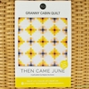Then Came June, Sewing Pattern, Granny Cabin Quilt