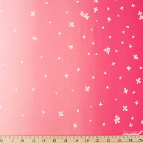 V and Co. for Moda, Ombre Bloom, Double Border Hot Pink