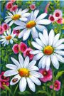 Garden Flag, Big Daisies, Spring / Summer Flowers, Floral