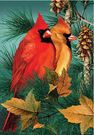 Garden Flag, Cardinals, Autumn Splendor, Birds