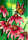 Garden Flag, Spring/Summer, Monarch Butterfly, Cone Flowers