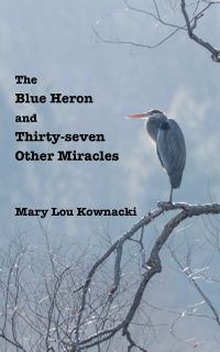 Blue Heron and Thirty-Seven Other Miracles eBook