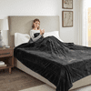 Beautyrest 100% Polyester Solid Microlight Reversible Heated Blanket - Full