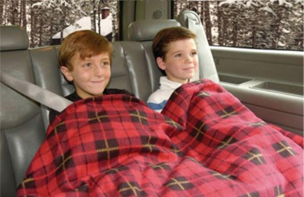 58eafb0e6b Car Cozy 2  12 Volt Heated Blanket - The Warming Store