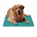Chillow Canine Cooler Dog Bed - Small