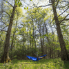 Eagles Nest Outfitters Atlas XL Hammock Suspension System