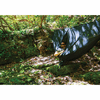 Eagles Nest Outfitters Guardian Bug Net with Insect Shield - Black
