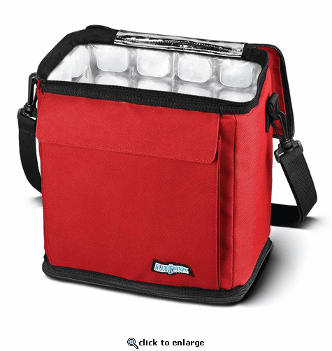 FlexiFreeze 12 Can Cooler with Built in Ice
