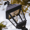 Gama Sonic Imperial B Solar Lamp 3 inch Pole Mount With GS Solar LED Light Bulb