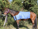 HyperKewl Evaporative Cooling Horse Blanket - Small/Medium