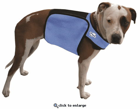 Techkewl Phase Change Cooling Dog Vest S M The Warming