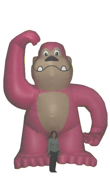 20' Pink Gorilla (18 oz.) - Used