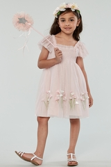 d287fe53d Biscotti 107 Pink Spring Gardens Embroidered Tulle w/ Smocked Bodice
