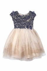 Biscotti Navy & Gold Lace Tulle Dress