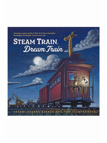 Steam Train Dream Train Book