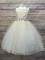 Champagne Luxurious Silk Top w/ Embroidered Mesh Overlay & Rhinestone Belt Dress