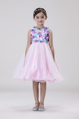 Chic Baby 078 Pink 3D Flower Tulle Dress