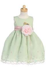 Mint Green Embroidered Organza Dress