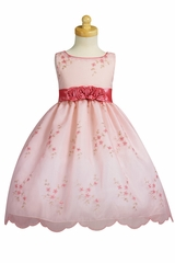 Pink Embroidered Organza Dress w/ Taffeta Waistband