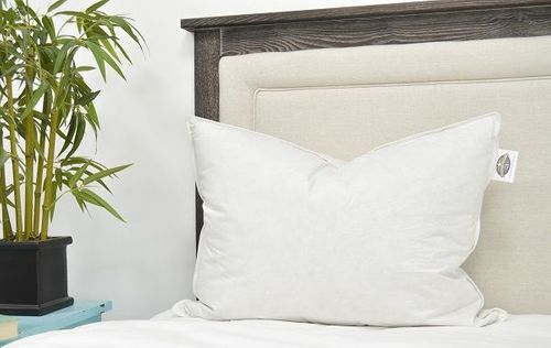 <b>50% off Retail Price</b> Pacific Coast ® Double Down Surround Standard Pillow Set With 2 Free Pillowcases