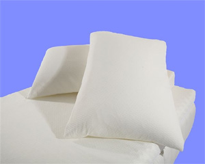 50% White Goose Down 50% White Goose Feather Pillow as Featured at the W Hotel