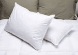 Pillowtex Hotel Feather and Down Pillow Set - Queen Size