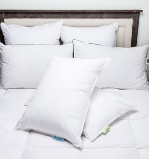 Blue Label Firm/Green Label Soft Combo Pack- Featured at Many Choice ® Hotels (Includes 2 Pillows)
