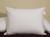 Down Alternative Eco Pillow- Featured at Many Ritz Carlton ® Hotels
