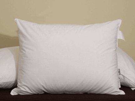 Down Alternative Eco Pillow- Featured at Many Ritz Carlton ® Hotels (Standard)