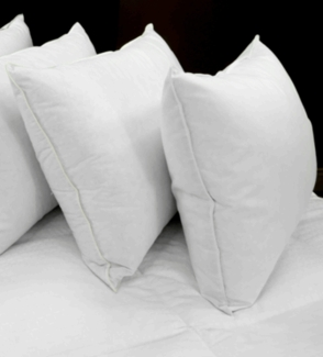 Down Dreams ® Classic Soft Pillow- Featured at Many DoubleTree ® Hotels (Queen)