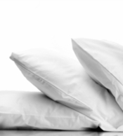 Down Dreams ® Classic Soft Pillow-Featured at many Hilton &reg Hotels