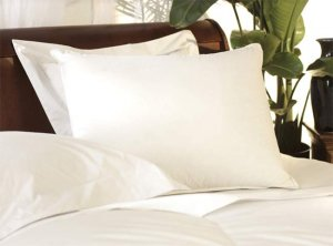 Down Etc. 50% Down 50% Feather Queen Pillow- Found in the Red Rocks Hotel (4 Queen Pillows)