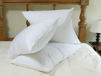 The Down Etc.® Down Rhapsody Queen Pillow- Featured in Hotel ZAZA (4 Queen Pillows)