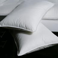 Down & Feather Pillows - As Featured in Many Marriott ® Resorts