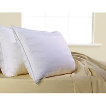 Down Lite ® Primaloft ™ Down Alternative Pillow- As featured at the Fontainebleau Hotel (1 Queen Pillow)