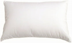 Encompass Group 50% Goose Down / 50% Goose Feather Complete Queen Pillow Set  Featured in Many Sheraton  Hotels (4 Queen Pillows)