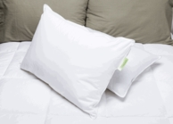 Green Label Soft Pillow-Featured at Choice ® Hotels