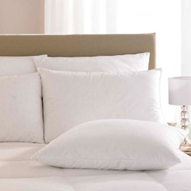 Pacific Coast ® Down Surround Standard Pillow- Featured in Many Marriott ® Properties (4 Pillows Included)