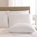 Pacific Coast ® Down Surround Standard Pillow- Featured in Many Marriott Properties Worldwide (2 Standard Pillows)